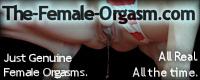 Visit The Female Orgasm
